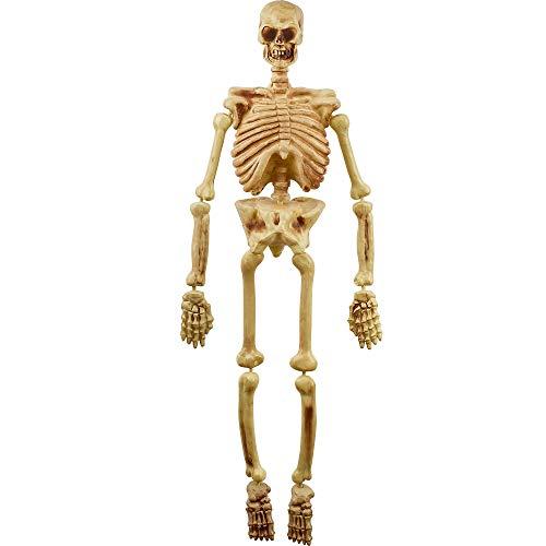AMSCAN Hanging Plastic Skeleton, Halloween Props, 5' -
