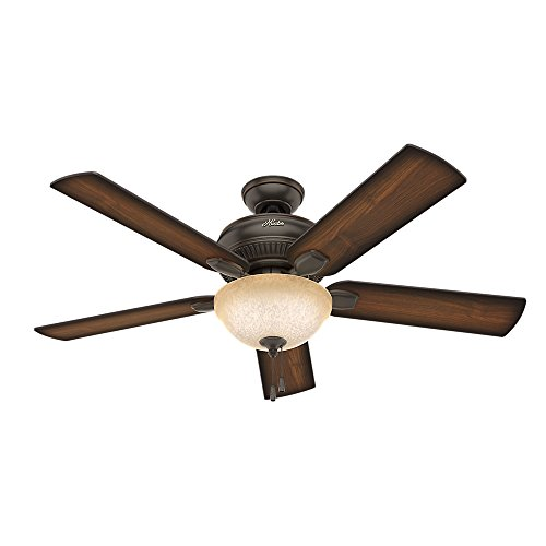 Hunter Indoor / Outdoor Ceiling Fan with light and pull chain control - Matheston 52 inch, Onyx Bengal, 54092 ()