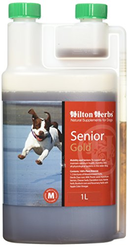 Picture of Hilton Herbs Senior Dog Gold Herbal Supplement for Older Dogs 0.5pt ( 250ml) Bottle