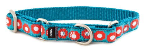 PetSafe Fido Finery Martingale-Style Dog Collar, 1-Inch, Medium, Teal My Heart