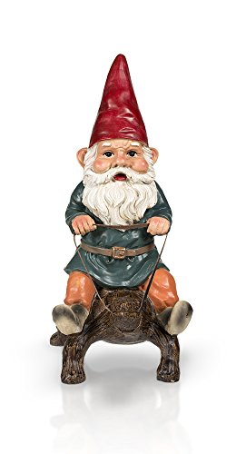 Garden Gnome Riding Turtle 14″ Review