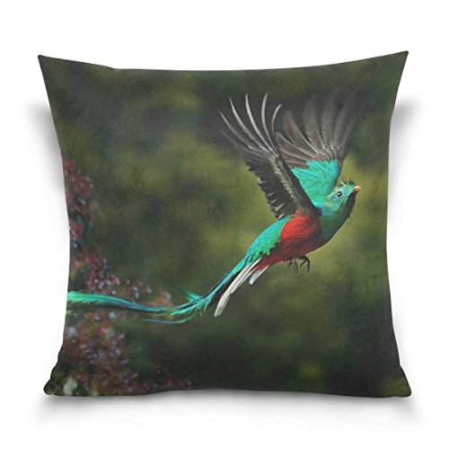vers Flying Resplendent Quetzal Soft Velvet Cushion Cover Pillow Case for Sofa Bed 18x18 inches, Set of 2 ()