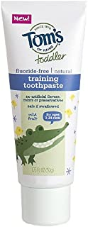 product image for Tom's of Maine Toddler's Fluoride-Free Natural Toothpaste, Mild Fruit 1.75 oz (Pack of 2)