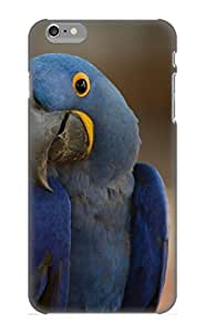 Flyinghouse High Quality Animal Hyacinth Macaw Case For Iphone 6 Plus / Perfect Case For Lovers