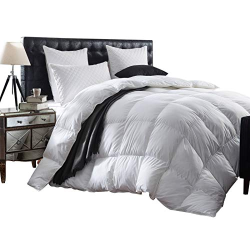 Luxurious 1200 Thread Count Goose Down Comforter Duvet Insert, Twin Size, 1200TC - 100% Egyptian Cotton Cover, 750+ Fill Power, 50 oz Fill Weight, White Color