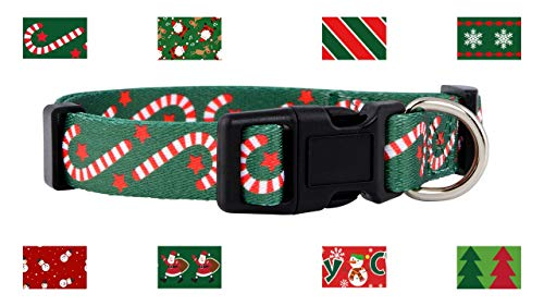Native Pup Christmas Dog Collar (Large, Candy Canes)