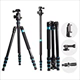 "Regetek 63"" Professional DSLR Camera Tripod Monopod with 360 Panorama Ball Head for Canon Nikon Sony Olympus DV Gopro with Carry Bag/Phone Adaptor/Gopro Mount"