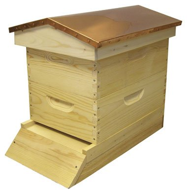 Bee Hive   Standard Garden Hive  Fully Assembled    Perfect Copper Top Beehive For Beginners And Pro Beekeepers  Just Add Honey Bees  Easy To Lift Wood Beehives  Quality Guaranteed Or Your