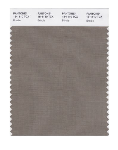 PANTONE SMART 18-1110X Color Swatch Card, Brindle ()