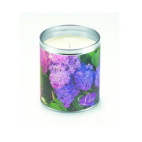 Aunt Sadies Candles Lilac Bush