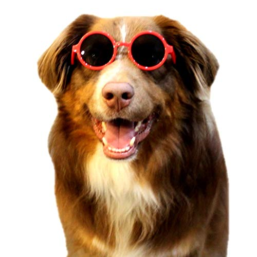 - Style Vault 001 Dog Round Glasses Sunglasses Medium to Large Dogs 25lbs & Over (Red)
