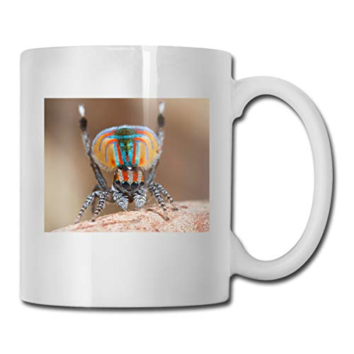 Porcelain Coffee Mug Spider Peacock Colorful Ceramic Cup Tea Brewing Cups for Home Office]()