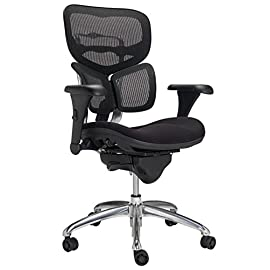 Workpro 1000 Top Rated Ergonomic Offic Chair