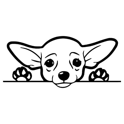 Cute Chihuahua Dog Vinyl Decal Sticker | Cars Trucks Vans SUVs Windows Walls Cups Laptops | Black | 7 Inch | KCD2432B: Automotive