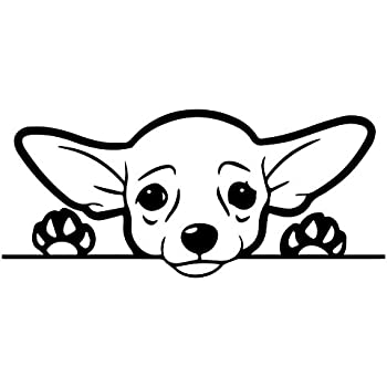 amazon chihuahua do not step on the guard dog sticker funny  cute chihuahua dog vinyl decal sticker cars trucks vans suvs windows walls cups laptops black 7 inch kcd2432b