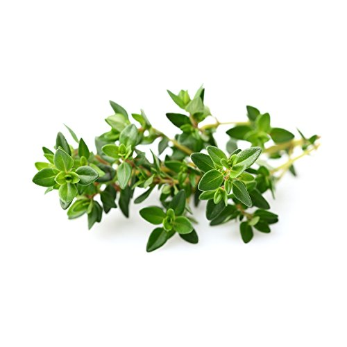 Click and Grow Smart Garden Thyme Plant Pods, 9-Pack