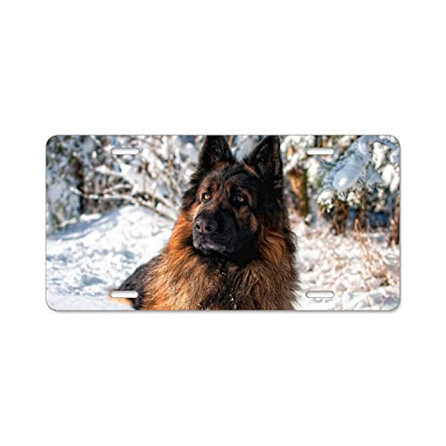 fffvv Animal German Shepherd Dogs Home,Bathroom and Bar Wall Decor Car Vehicle License Plate Metal Tin Sign Plaque -