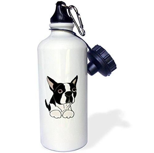 3dRose Cute Boston Terrier Puppy Dog Original-Sports Water Bottle, 21oz (wb_216347_1), 21 oz, Multicolor ()