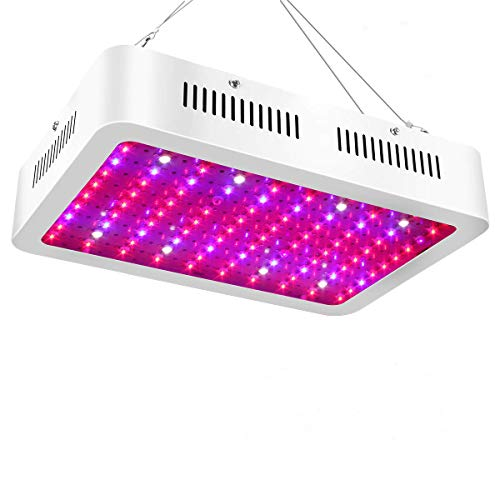 1000 Watt Led Grow Lights Cannabis in US - 5
