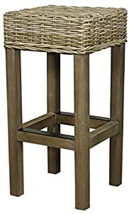 New Pacific Direct 748630-SGR Tigris Backless Bar Stool