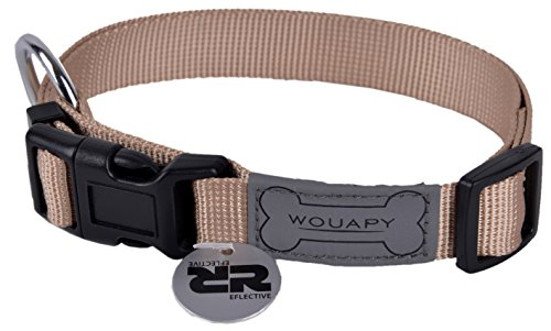 Wouapy Basic Line Collar for Dog, 25 mm Width, Neck Size 44/65 cm, Beige