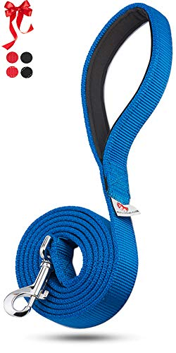 PetsLovers 2-Layer Dog Leash - Extra Durable Webbing, Padded Handle - 6 Feet Long, 1 Inch Wide