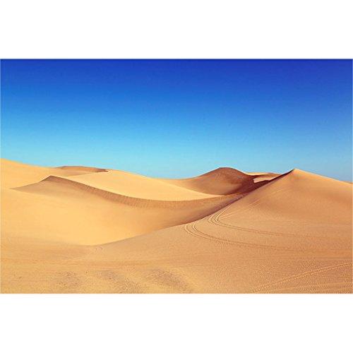 LovetheFamily 数字油絵 数字キット塗り絵 手塗り DIY絵 デジタル油絵 青空の下の砂漠 40x50cm ホーム オフィス装飾の商品画像