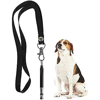Amazon.com : ZDCDEALS Professional Ultrasonic Dog Training