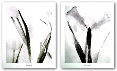 Amazon Com Ice Forms Series Twins Forever And Tulips On Ice Set By Ryuijie 18 75 X24 Art Print Poster Posters Prints