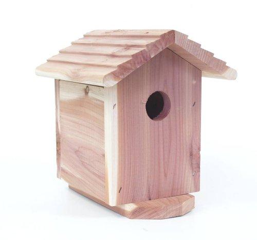 Review Bird House Camera/DVR –