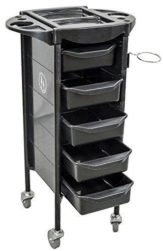 DevLon NorthWest Salon Rolling Cart Beauty Trolley Spa Equipment Beauty Storage Station