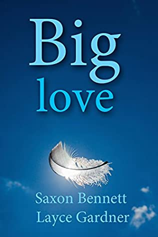 book cover of Big Love