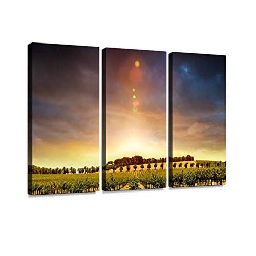 7houarts Sunset Vines Canvas Wall Artwork Poster Modern Home Wall Unique Pattern Wall Decoration Stretched and Framed - 3 Piece