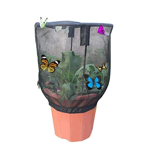 FGGSD Butterfly Habitat Net Cage,Collapsible Bug Catcher Net Mesh Insects Plant Cage for Crickets,Firefly,Ladybird