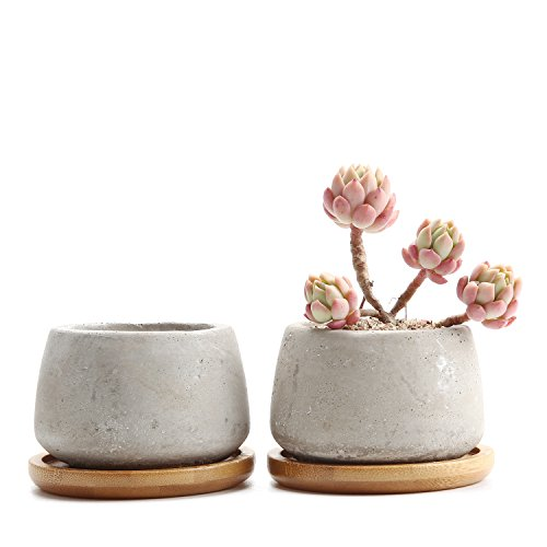 T4U 2.5 Inch Cement Serial Small Round Sucuulent Cactus Plant Pots Flower Pots Planters Containers Window Boxes With Bamboo Tray Grey - Pack of 2 ()