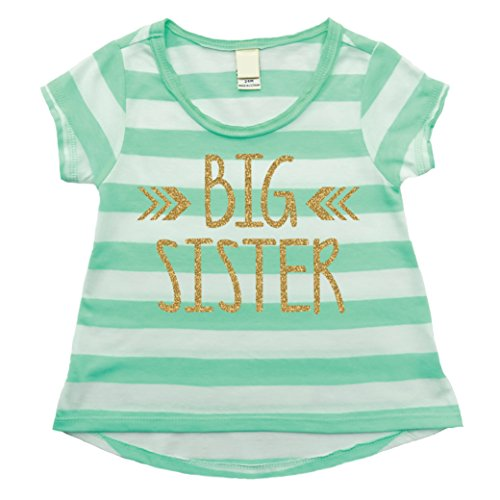 Big Sister Shirt, Baby Girl Clothes, Big Sister Gift (4T) by Bump and Beyond Designs