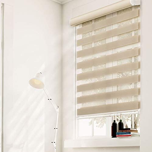 CHICOLOGY Free-Stop Cordless Zebra Roller Shades Dual Layer Combi Window Blind, 49