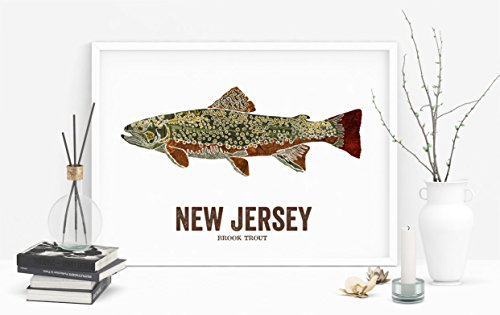 New Jersey State Fish, Nature art, Outdoor art, Vintage Map art, Art print, Fish Wall decor, Fish Art, Gift For Dad - Brook Trout Cost Frame Jersey