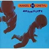 Ausgeflippt by Hanzel Und Gretyl