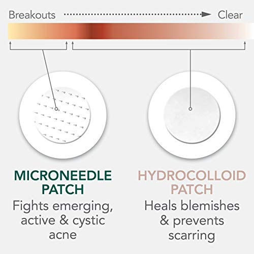 Rael Microneedle Acne Healing Patch - Pimple Acne Spot Tea Tree Treatment (4Pack, 36 Patches) by Rael (Image #1)