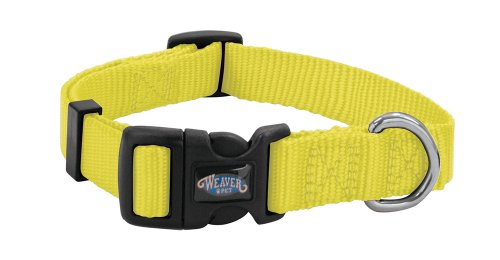 Weaver Leather Prism Snap-N-Go Collar, Medium, Orbit Yellow