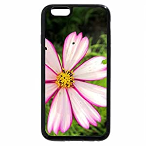 iPhone 6S / iPhone 6 Case (Black) Lovely cosmos