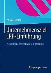 Unternehmensziel ERP-Einführung: IT Muss Nutzen Stiften (German Edition)