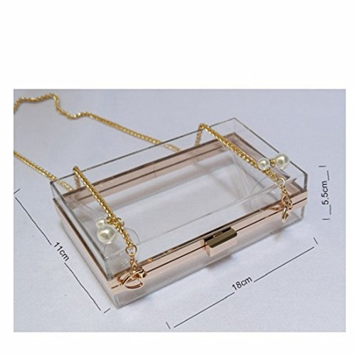 Acrylic Women Bags Handbag Clear Transparent Clutches Evening Luxury Shoulder Black 55qrCwH6