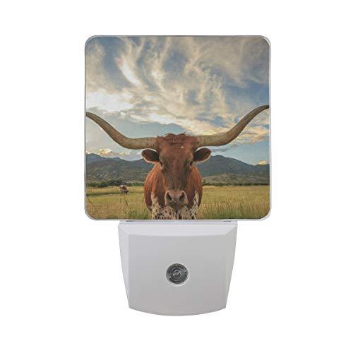 LED Night Light with Smart Dusk to Dawn Sensor,Texas Longhorn Steer Plug Wall Lamp Great for Bedroom Bathroom Hallway Stairways Or Any Dark Room