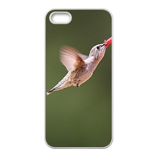 SYYCH Phone case Of Hummingbird Cover Case For iPhone 5,5S