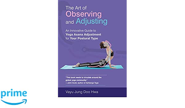 The Art of Observing and Adjusting: An Innovative Guide to ...