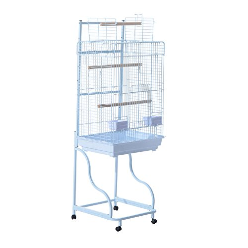Bird Cage 58