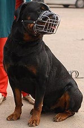 NUEVO metal alambre Cesta Bozal para perro para Rottweiler ...