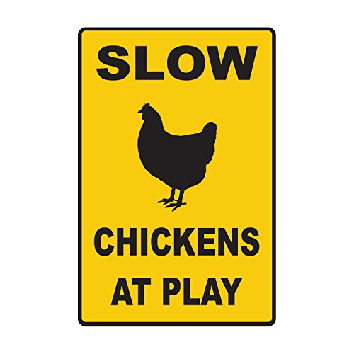 Slow Chickens At Play - 10